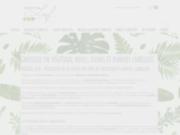 Végétal Leaf, grossiste spécialisé en végétaux stabilisés