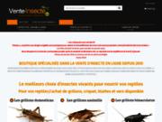 Achat en ligne d'insectes pour reptiles