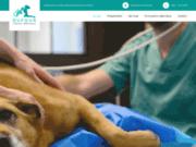 Dufour : cabinet vétérinaire moderne à Brunehaut