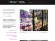 Vitrovisuel décoration sur vitre