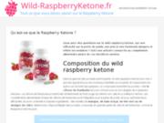 Pour tout savoir sur le raspberry ketone