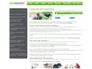 ZenAnimo : trouvez la meilleure assurance pour votre animal de compagnie