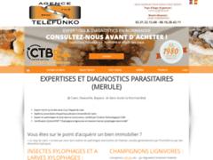 Création du site Internet de Agence TELEFUNKO (Entreprise de Diagnostiqueur à SAINTE HONORINE DES PERTES )