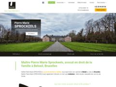 Maître Pierre Marie Sprockeels, avocat en droit de la famille à Beloeil
