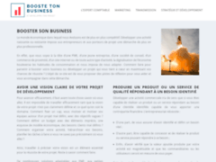 Détails : Booster de Business des Pros, le site qui vous aide à améliorer votre business