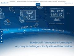 Détails : Bluebearsit : entreprise spécialisée en infogérance