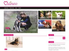 Détails : Conseils pour éduquer les chiens