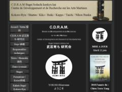 Formation Reiki, Qi Gong et Arts Martiaux