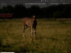Détails : Votre hôtel Château du Breuil est 4 étoiles