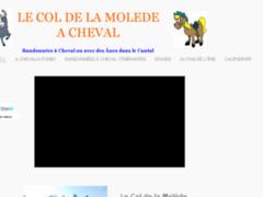 Randonnées à Cheval dans le Cantal- Gîte