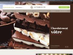 Chocolaterie à L'Isle-d'Abeau, près de Bourgoin-Jallieu