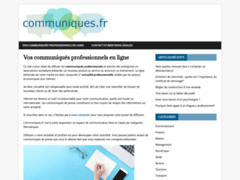 Détails : Développer un plan de communication et de marketing sur internet