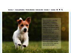 Détails : Dressage chien Bordeaux uniquement en méthodes douces