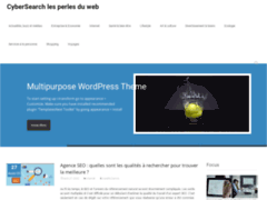 Cybersearch votre véritable perle du web pour un agréable voyage