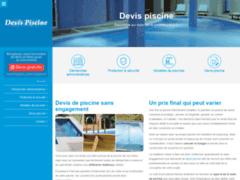 Des artisans confirmés pour la conception d'une piscine