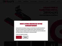 Détails : Agence web Drosalys