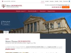 Détails : Maitre Thomas DUFORESTEL, avocat à Nice