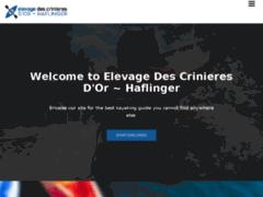 Elevage de Haflingers Les Crinières d'Or