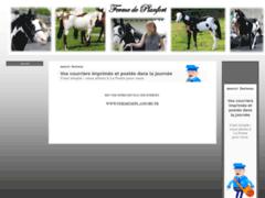 Elevage Paint Horse et Quarter horse