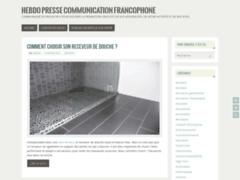 Détails : Blog pour le lancement de sites web