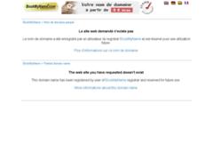 Création du site Internet de IPS RENOV' (Entreprise de Entreprise générale à ST RAPHAEL )