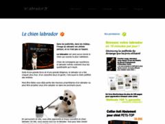 Détails : Bien connaitre le chien labrador pour bien l'éduquer