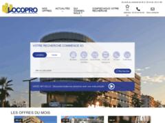 Détails : Agence de location des biens immobiliers industriels
