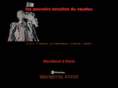 Détails : Voyant Mamba à Paris