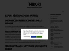 Détails : Agence de référencement pas à Paris : midoritech une équipe sympathique.