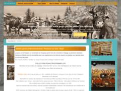 Détails : Poya, peinture traditionnelle sur bois d'origine suisse