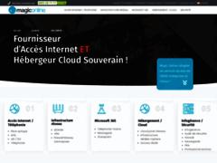 Détails : Hébergeur Web et Nom de Domaine