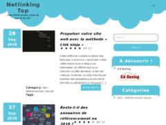 Détails : Référencement et netlinking