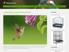 Cages oiseaux domestiques
