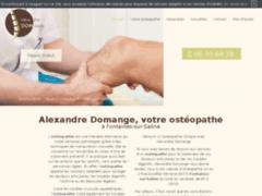 Détails : Alexandre Domange