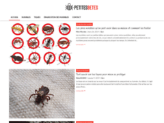 Détails :  Petites bêtes, conseils et astuces sur l'éradication des nuisibles