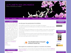 Détails : Culture orchidées phalaenopsis