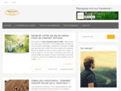 Détails : Blog d'information