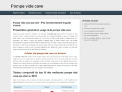 Détails : Pompe vide cave pas cher