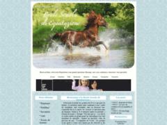 Reale Scuola di Equitazione