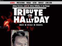 Détails : TributeToHallyday - Johnny Success : Sosie de Johnny Hallyday
