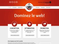 Détails : Services de création site web