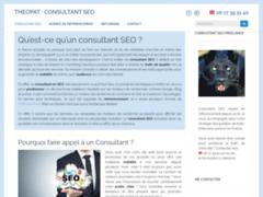 Détails : Theopat, Consultant Seo freelance