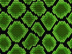 Détails : Votre boutique d'insectes vivants