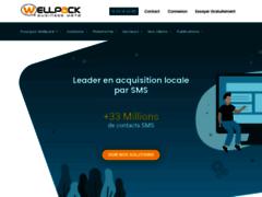 Détails : Wellpack Business Data, le prestataire de campagne SMS marketing