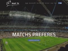 Détails : Wulf TV