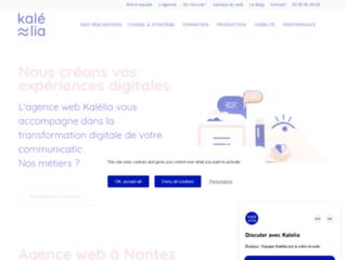 Détails : Création site internet marchand