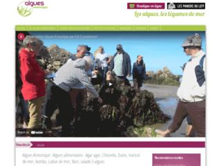 algues déshydratées ou fraîches bio
