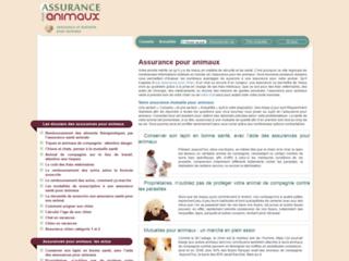 Détails : Assurance pour animaux