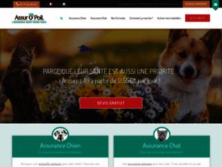 Prévenir la santé des chiens et des chats