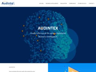 AUDINTEX